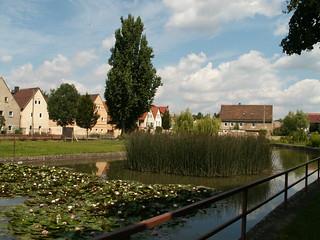 Orks wimmelt im Dorf Radebeul Altnaundorf 274