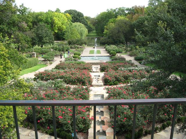 Rose Garden During Japanese Gardens Fall Festival In Fort Worth Texas Flickr Photo Sharing