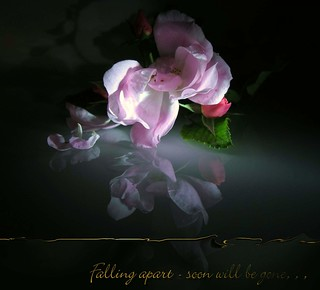 Falling apart - soon will be gone . . .