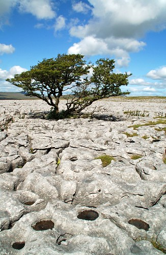 White Scars limestone pavement, Ingleborough