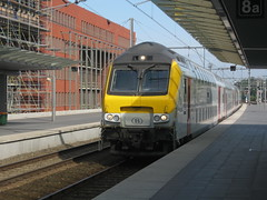Belgian DVT