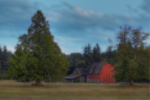 park old field barn geotagged evening soft little farm sharp langley hdr redbarn campbellvalley janusz leszczynski 003008 geo:lat=49015539 geo:lon=122656438