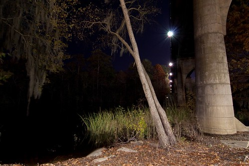 longexposure bridge trees tree sc night lights conway southcarolina tokinaatx116prodx
