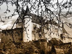 Castle of Vianden  again!