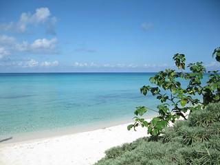 Playa Palancar görüntü. cozumel