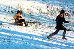 Random sledge pursuit plus wellies, Ipswich, 19 December 2009