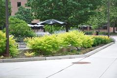 Tawes Plaza