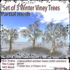 Set of 3 Winter Viney Trees