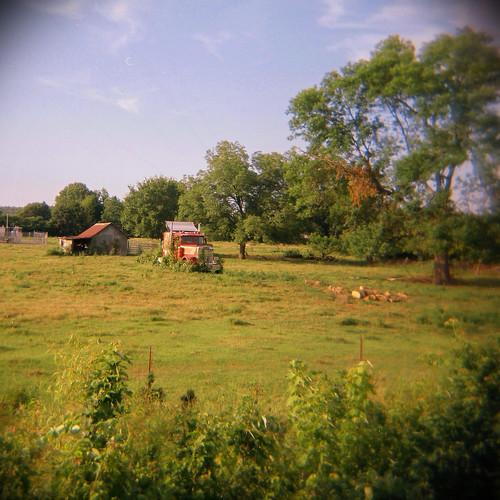 tree film overgrown field grass barn rural truck mediumformat holga lomography ar kodak toycamera semi transportation arkansas vignetting portra 120n adandoned 400nc vilonia faulknercounty itshiptobesquare