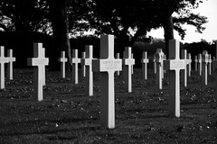 American Military Cemetery, Margraten (5/5)