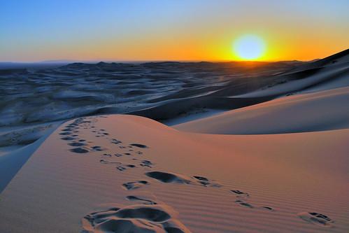 sunset sand desert dune sable mongolia els gobi coucherdesoleil désert mongolie khongoryn mongolien песчаная монголулс bayangobi пустыня bayankhongor кочевник гоби баянхонгор дюна bayangovi баянговь