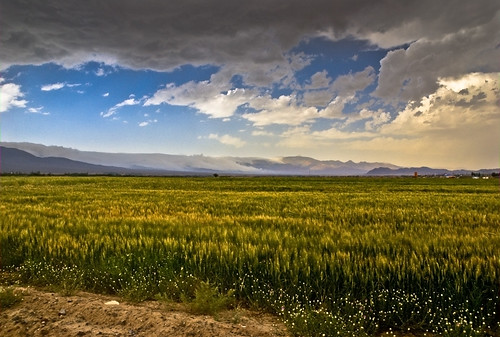 iran ایران hdr bastam cloudjungle shahroud iranmap بسطام abrjungle جنگلابر iranmapcom iranhdrشاهرود