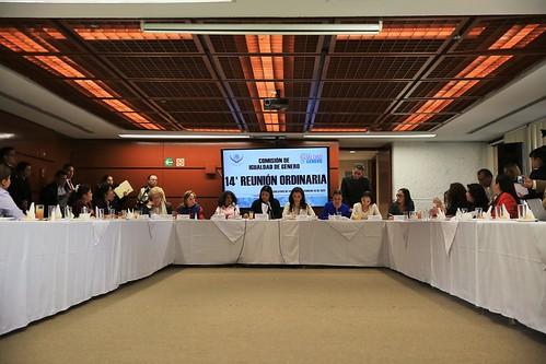 El martes 14 de febrero la Comisión de Igualdad de Género de la Cámara de Diputados llevó a cabo su 14 Reunión Ordinaria.