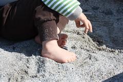 albins sommaräventyr