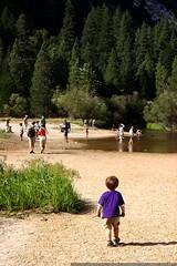 mirror lake   its just a puddle    MG 4086