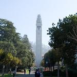 UC Berkeley Campus 004