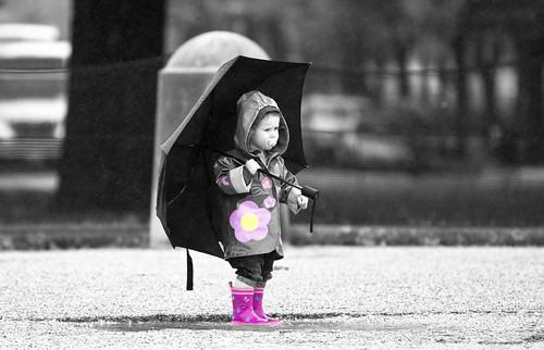 13 fabulous photos of a rainy day