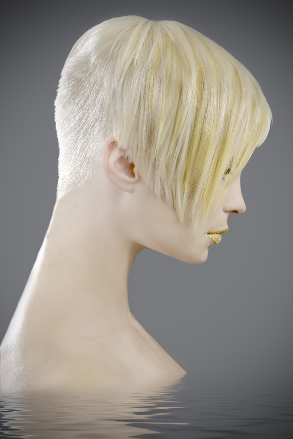 Short Inverted Bob with Shaved Nape