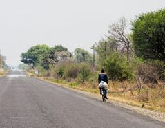Katima Mulo to the Zambian border