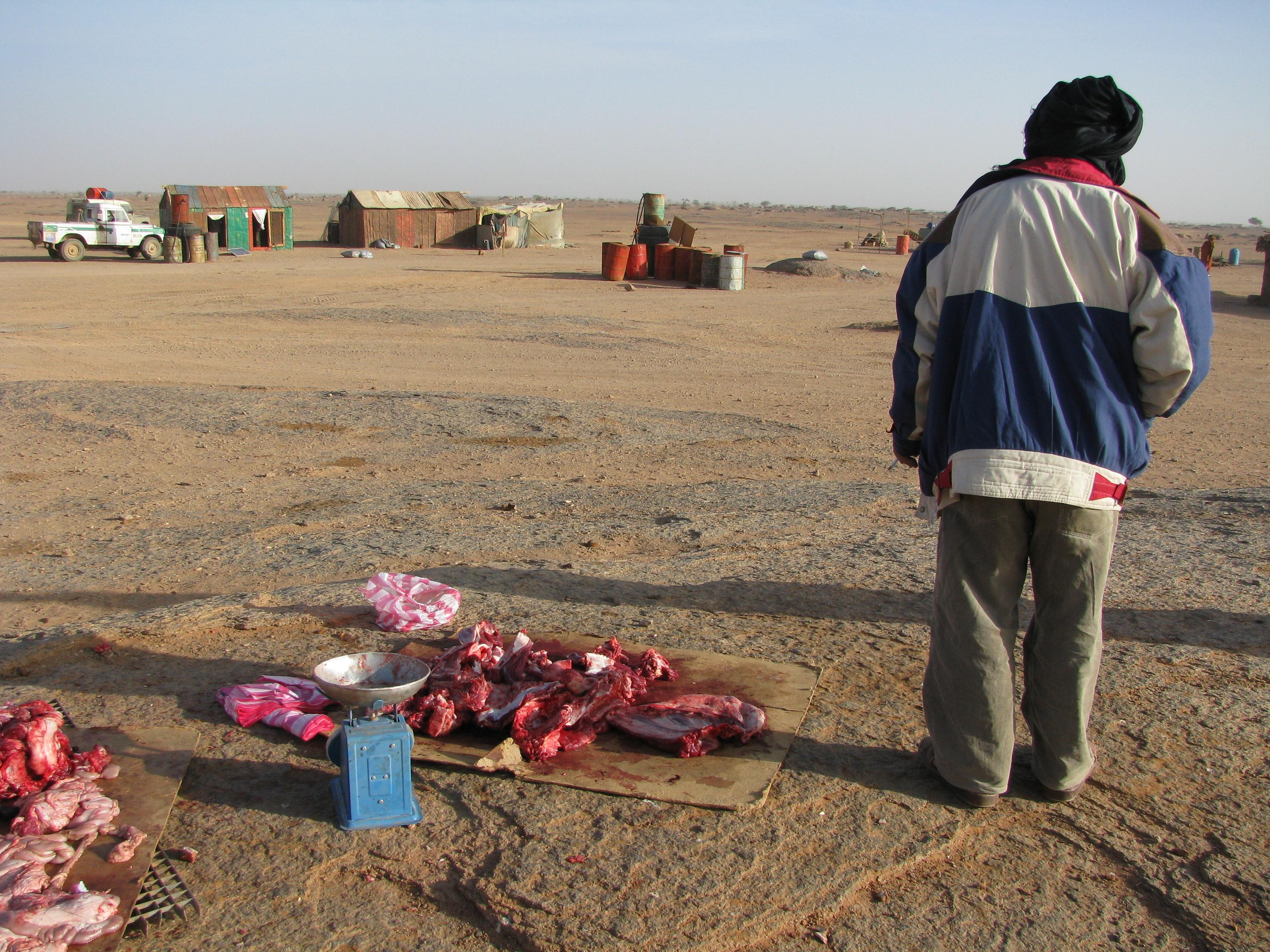 Le conflit armé du sahara marocain 3701287740_d4842e7253_o
