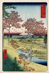 Hiroshige: Sunset Hill, Meguro in the eastern capital, 1858