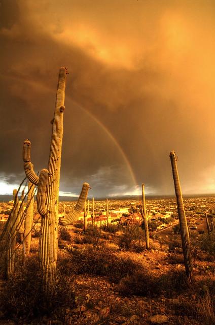 Monsoon Rainbow