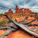 Utah-Arizona