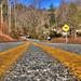 Rich Mountain Road