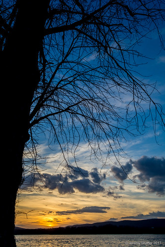 susquehannariver millersburgpa river waterfront sunset sky clouds tree shadow mountain pennsylvania outdoors nature