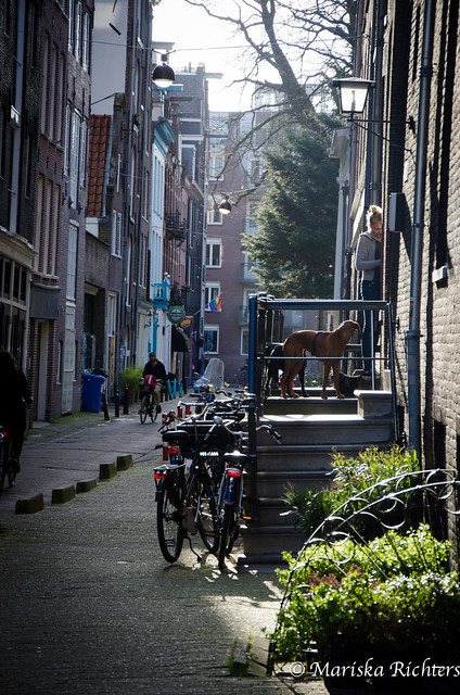 Amsterdam-38