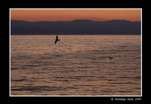 color digital sunrise landscape nikon d70 alba digitale croatia colori croazia paesaggio croatie hrvatska kroatien クロアチア 克羅地亞