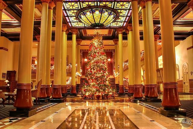 Hotel Texas Rome
