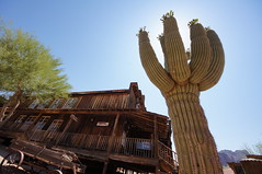2011-06-05 Arizona, Apache Trail  021 Goldfield