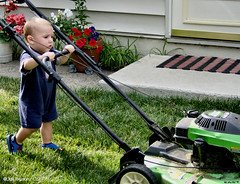 vehicle(0.0), baby carriage(0.0), land vehicle(0.0), outdoor power equipment(1.0), tool(1.0), mower(1.0), lawn mower(1.0), lawn(1.0),