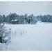 Swedish winter by Kaj Bjurman
