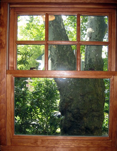 Old Wood Windows : Window panes replacing double pane windows