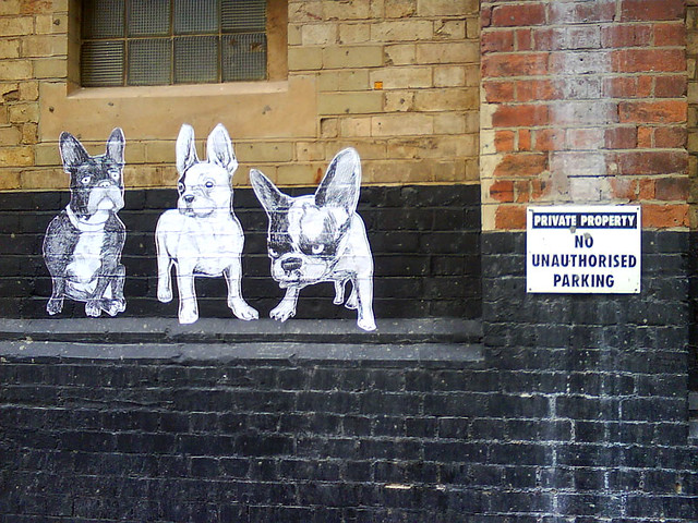 french bulldogs in london