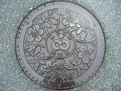 Koudera town Hyogo pref manhole cover(兵庫県香寺町のマンホール)