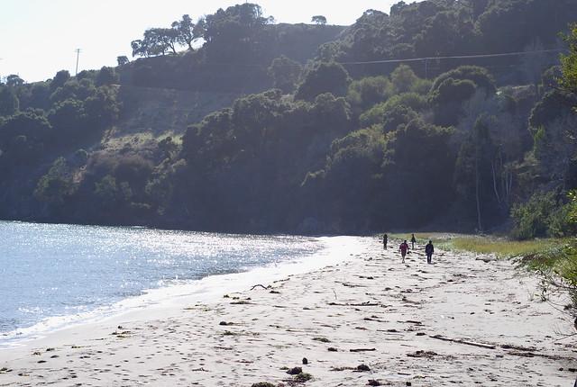Quarry Beach Angel Island
