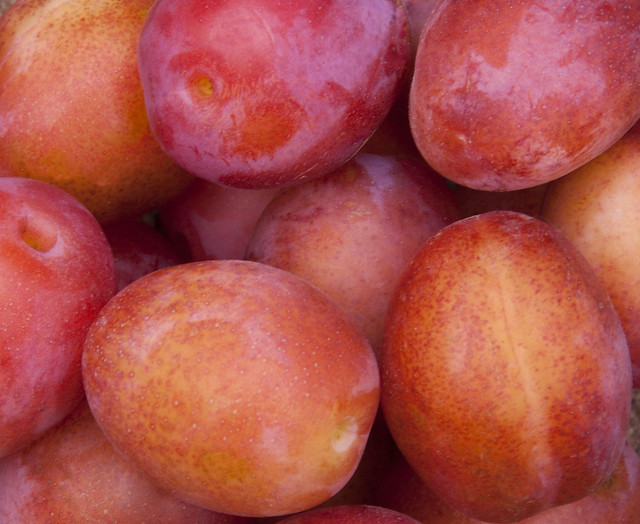 Plums from Flickr via Wylio