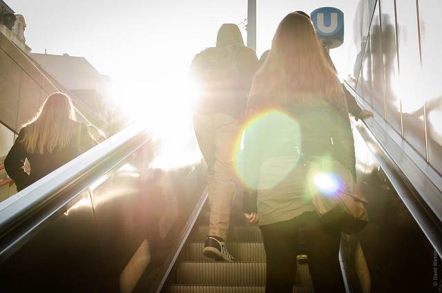 Project 365: #69 - Into the Light
