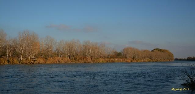 Header of Ebro