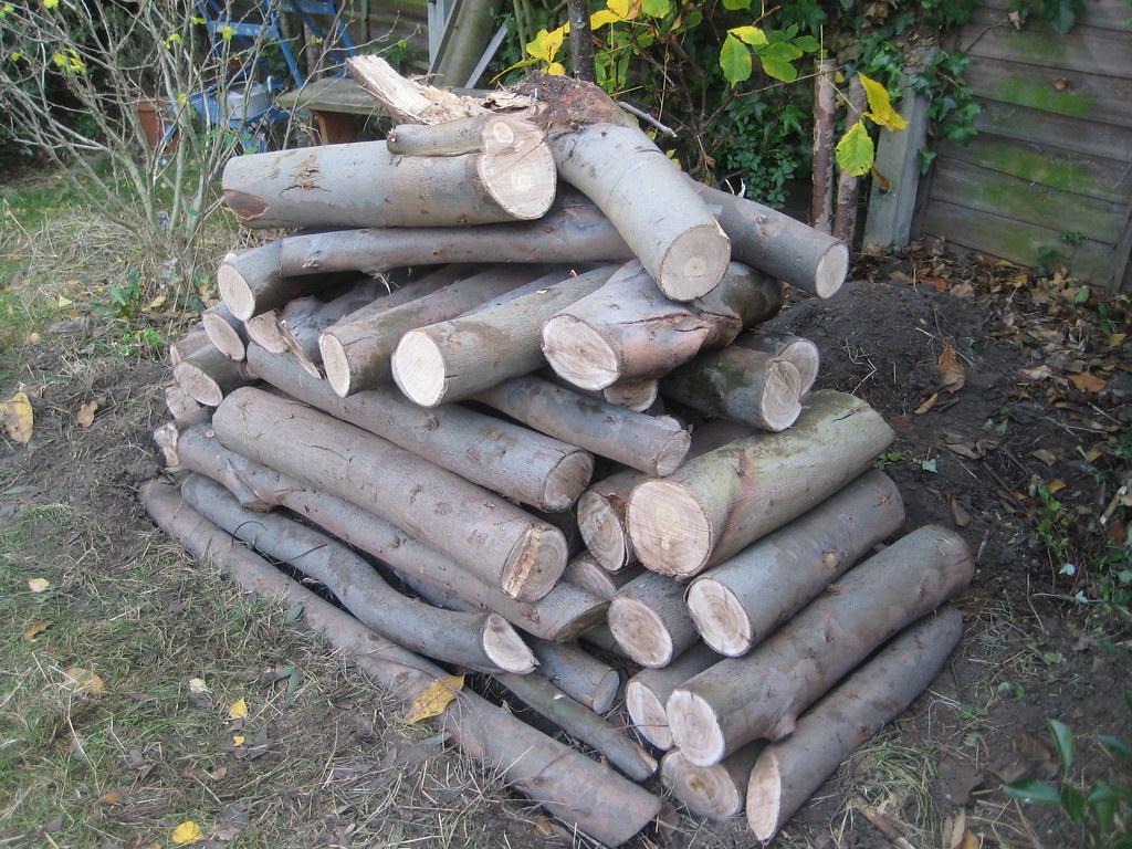 Log pile wildlife habitat