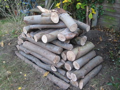 Logs, Log pile wildlife habitat