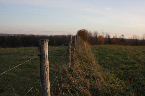 camera new sunset grass fence wire barbed hilltop