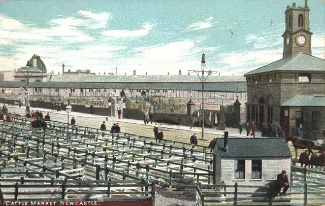 Cattle Market, Newcastle
