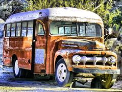 Old Short School Bus Old School Bus in The Desert