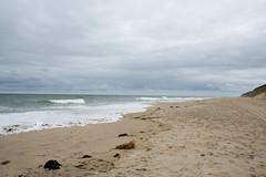 Cape Cod-2010-09-12-018