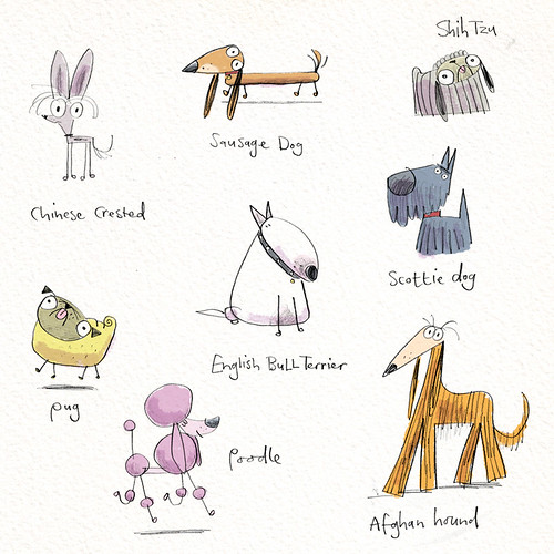 pencil pooches