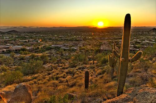 sunset arizona cactus phoenix sunrise landscape desert horizon scenic az scottsdale hdr blueribbonwinner photomatix diamondclassphotographer flickrdiamond 2008101300030
